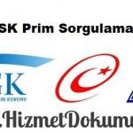 SSK Prim Sorgulama